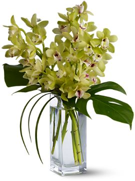 Contemporary Cymbidium Spray